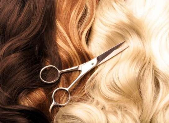 Покупаем натуральный волос у населения !