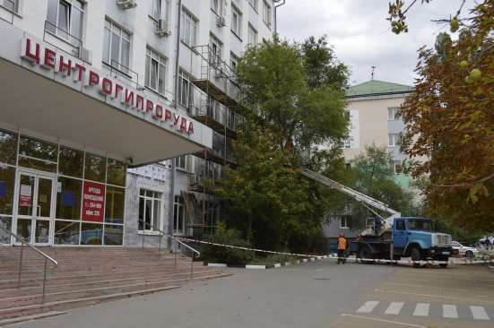 Спилить дерево в Белгороде и Белгородской области