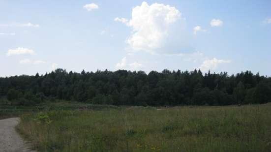 Продается  уч.2 га (земли сельхозназначения) Истринский р-н