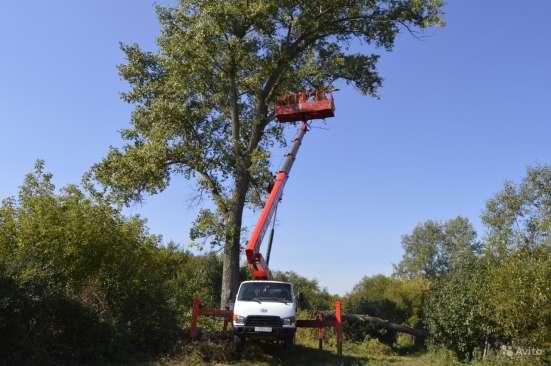Удаление опасно стоящих деревьев