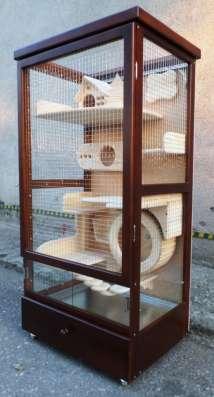 Витрина-клетка для содержания шиншилл, дегу, кроликов... в Белгороде Фото 4