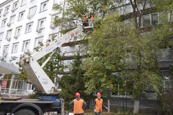 Спил деревьев, аварийных любой сложности