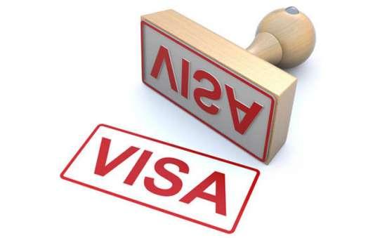 Перевод документации на визу