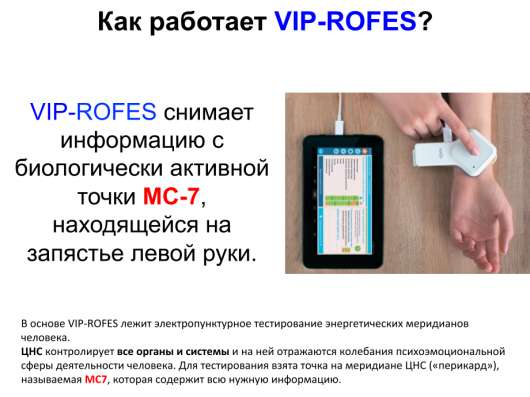 VIP-Rofes - Термометр Здоровья