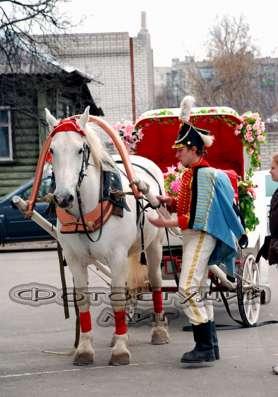 Фотограф на свадьбу,юбилей и т.д. в Коврове Фото 1