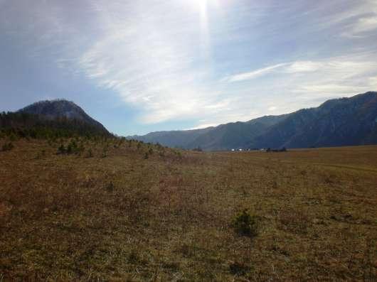 Земля на Алтае Чемал