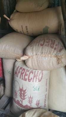 Какао бобы , Доминиканская Республика