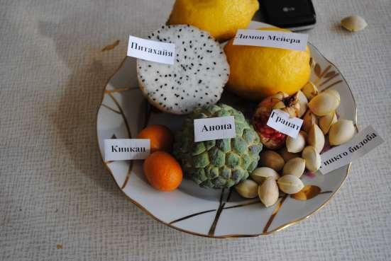 Экзотические и редкие семена и саженцы