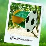 Семейный конструктор кормушка «ФУТБОЛ»
