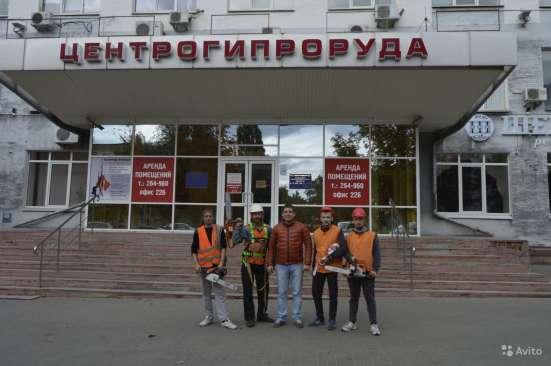 Спил деревьев любой сложности в Белгороде Фото 5