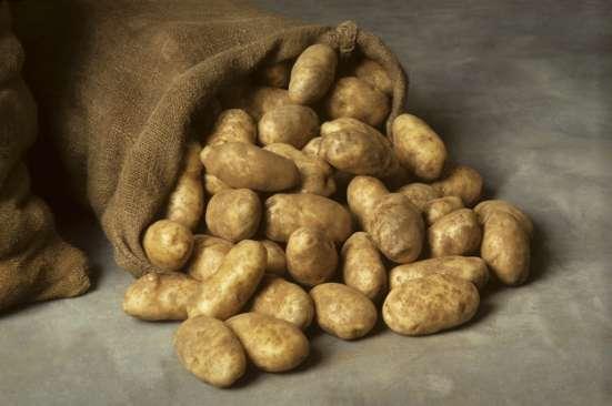 Продам деревенский картофель в Волоколамске Фото 2