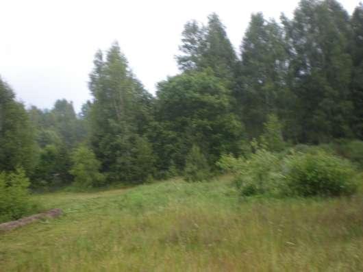 Участок около озера в г. Новолукомль Фото 3