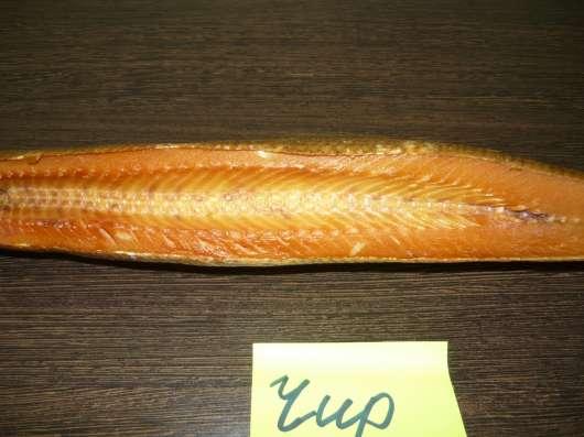 Северная рыба