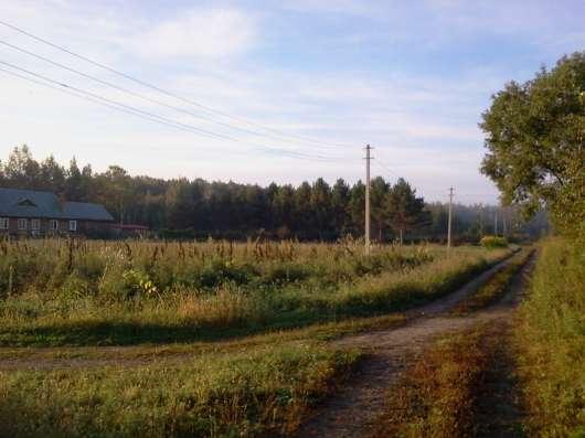 Экобаза в Хабаровске