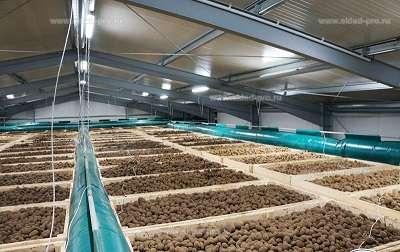 Строительство ангара, складов, зернотоков зерно хранилищ мет