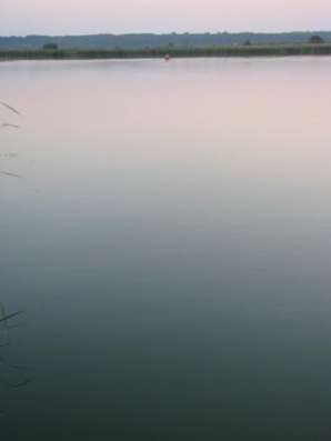 Дом ПМЖ рядом лес река озера недалеко от города в Рязани Фото 4