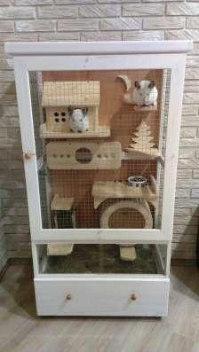 Витрина-клетка для содержания шиншилл, дегу, кроликов... в Белгороде Фото 5