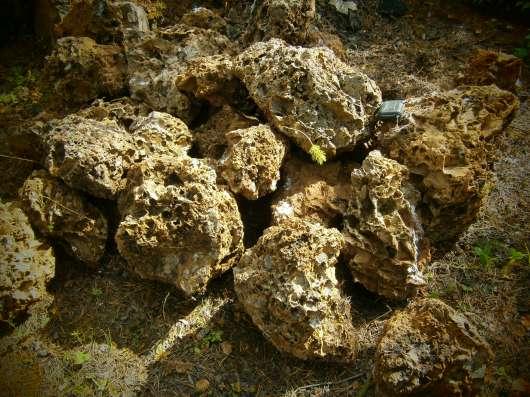 Ландшафтный камень дырчатый туф