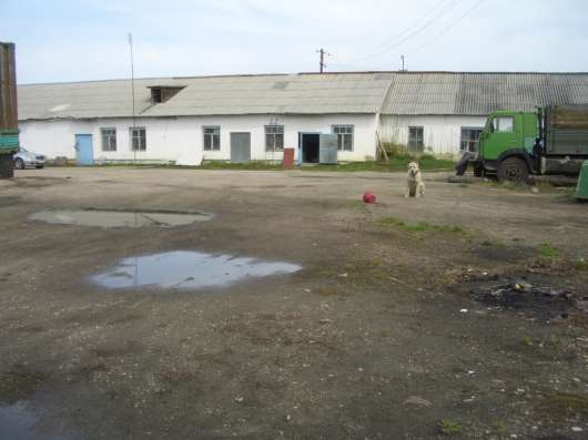 Продам производственно-складскую базу. В селе Еткуле. Еткуль в Челябинске Фото 3