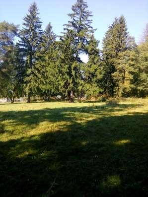 30 соток в лесу новая Москва д.Сатино-Русское Фото 1
