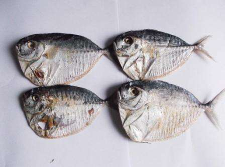 Сушеные морепродукты,вяленая рыба, рыбные снеки к пиву оптом