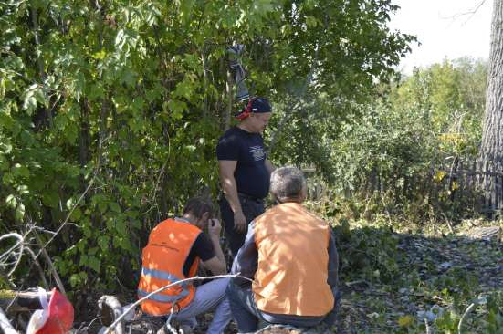 Удаление опасно стоящих деревьев в Белгороде Фото 2