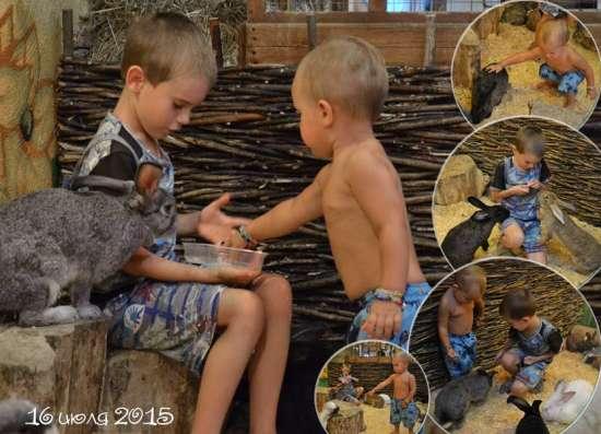 фото на документы в Мокром Батае в Ростове-на-Дону Фото 1
