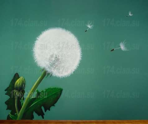Роспись стен и интерьеров,граффити,рисунок на асфальте