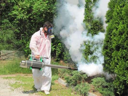Обработка от клещей бытовых насекомых и вредителей
