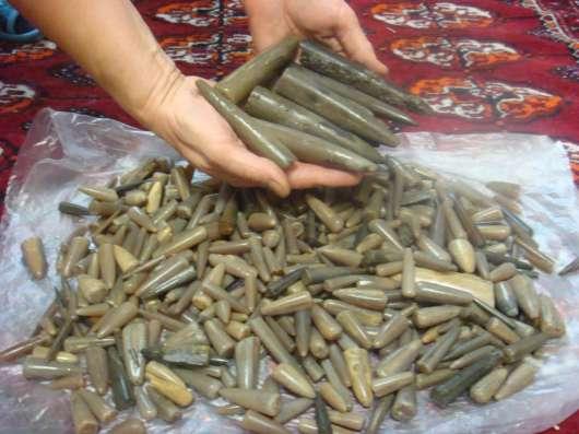 Продам белемниты в Ульяновске Фото 1