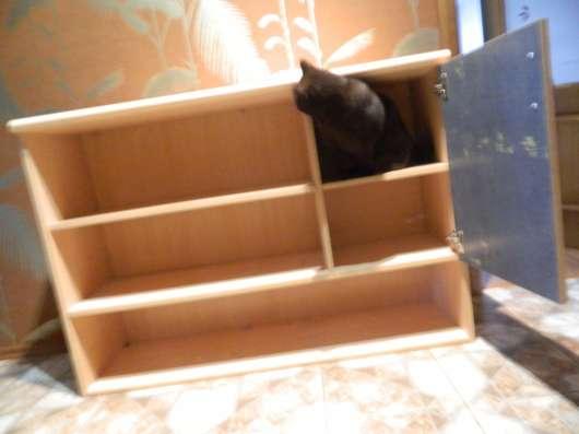 навесной книжный шкаф