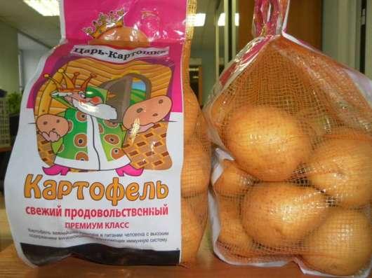 Яблоки оптом в г. Самара Фото 2