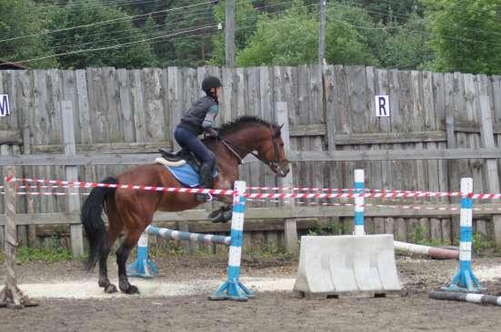 Конно-спортивная школа в Екатеринбурге Фото 3