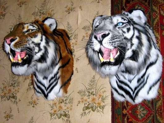 Амурский тигр в Москве Фото 2