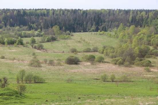 Продам земельный участок 10 соток д. Дергайково, Московская