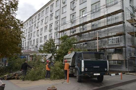 Спил, кронирование, валка деревьев в Белгороде Фото 4