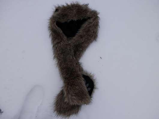 шапку медвежью(из серии в Воронеже Фото 1