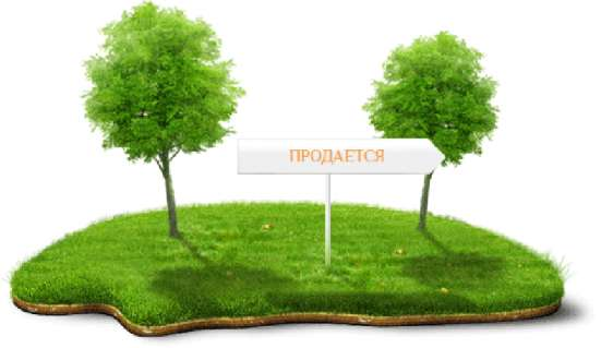 Земельные споры.Оформление права собственности