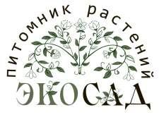 """""""Эко-сад"""" , фото"""